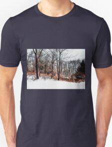 Winter in IR Unisex T-Shirt