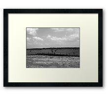 Field of Grey Framed Print