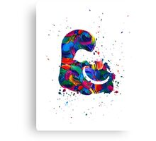 Cheshire Splat Canvas Print