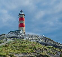 Cape Moreton Lighthouse, Moreton Island, QLD Australia by Ann Pinnock