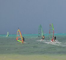 Tropical Wind Surfing by Alec Owen-Evans