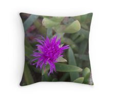 Beach Flower - Broadbeach Throw Pillow