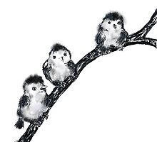 Baby birds on tree branch by Trish Loader