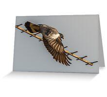Aerial Encounter 9 - Departure Greeting Card