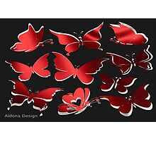 A butterfly Pattern (2320 Views) Photographic Print