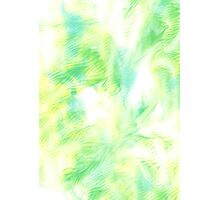 Citrus Fritz - Abstract Print   Photographic Print