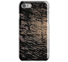 There will remain only ashes iPhone Case/Skin