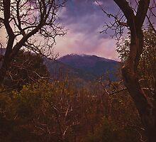 Mystical himalayan landscape by Anna Alferova