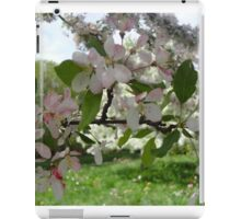 Pink and White Blossoms  iPad Case/Skin