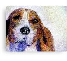 A Soulful Hound Canvas Print