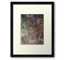 World View Framed Print
