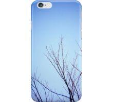 Little Glimmer iPhone Case/Skin