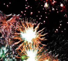 Dandelion Fireworks Sticker