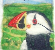 Puffin by margaretfraser