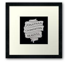 Jonathan Livingston Seagull Framed Print