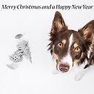 Merry Christmas by Karen Havenaar