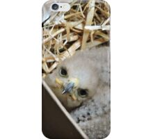 One Day I'll Fly iPhone Case/Skin