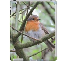 Red Breasted Angel iPad Case/Skin
