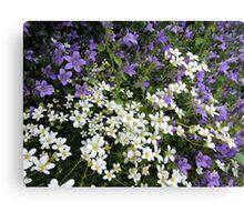 Lilac & White Floral Canvas Print
