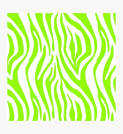 Bright Green Zebra Animal Print Pattern Photographic Print