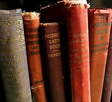 OLD BOOKS by Sandra  Aguirre