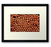Carrot Stacks.  Framed Print