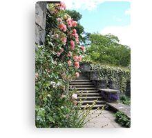 Wonderfully Welsh Floral Steps Canvas Print