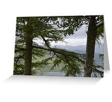 Trees Overlooking Loch Ness Greeting Card