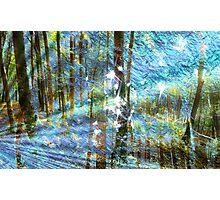 Elven Magic Photographic Print