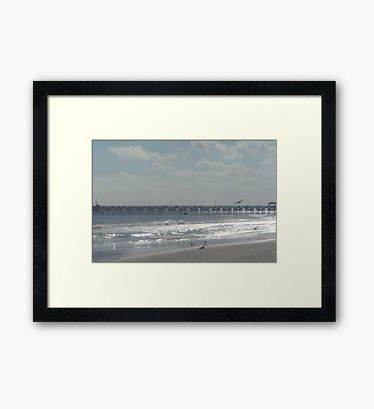 Myrtle Beach South Carolina Framed Print