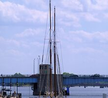 Appledore IV by Francis LaLonde