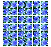 Blue2 Photographic Print