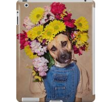 Purchase of this product will supply much needed dog food and medicine for the animals at Union County Animal Protection Society (UCAPS). iPad Case/Skin