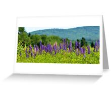 A Sign of Summer Greeting Card