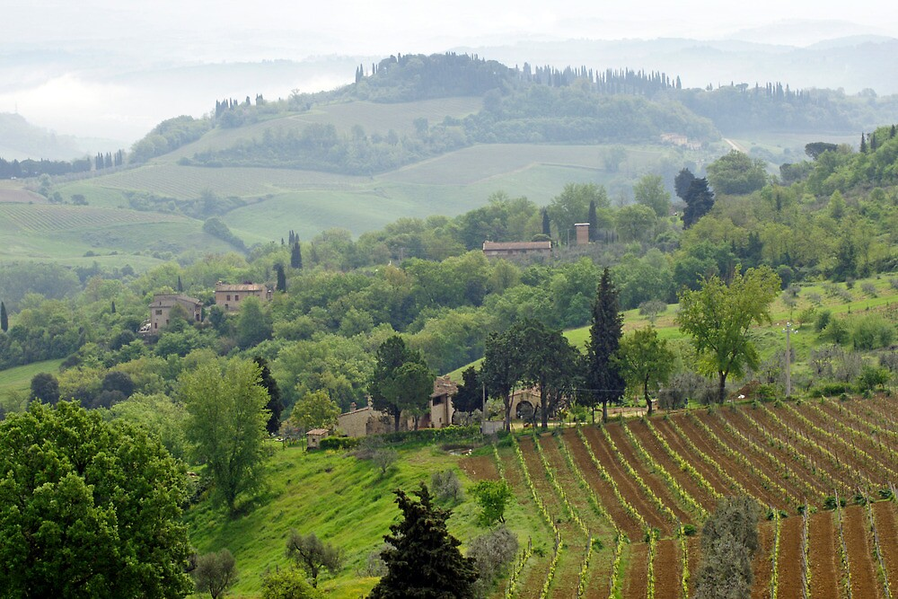 Tuscan Dreamscape by Harry Oldmeadow