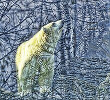 Polar Bear in a Blue Forest by brijo