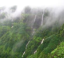 Pune to Kokan Car Rental by carrentalindia