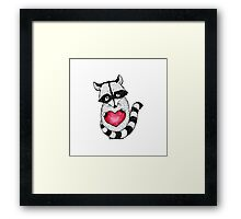 Raccoon carrying a heart.  Framed Print