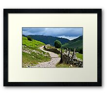 A Walk in Langdale Framed Print