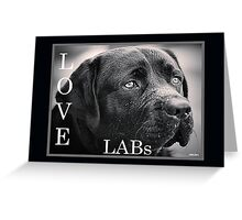 Love Labs : Sad Eyed Sam Greeting Card