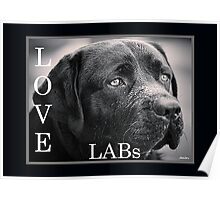 Love Labs : Sad Eyed Sam Poster