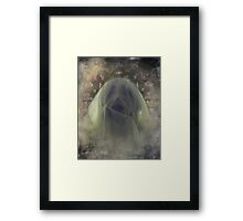 Afterlife IMG.5 Framed Print