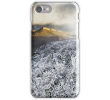 Mount William Snow (Panorama) iPhone Case/Skin