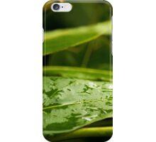 Rains iPhone Case/Skin