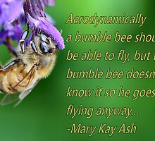 Shh! Bees can't fly by Keala