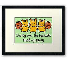 The squirrels steal my sanity Framed Print