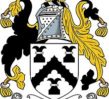 Walters Coat of Arms / Walters Family Crest by William Martin