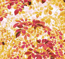 Foliage Hues - Orange And Pink And White by Shawna Rowe