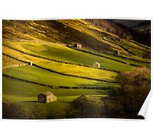 Swaledale Barns - Yorkshire Dales Poster