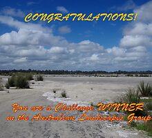 Australian Landscape Banner by lezvee
